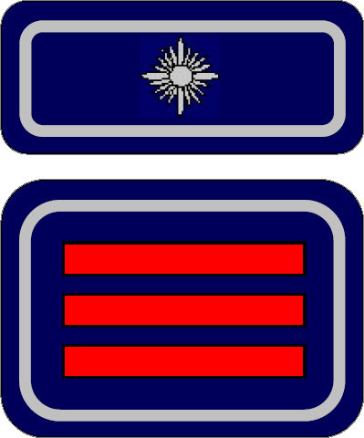 Hauptbrandmeister (Wehrführer)